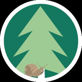 Icon mit Tannenbaum und Schnecke